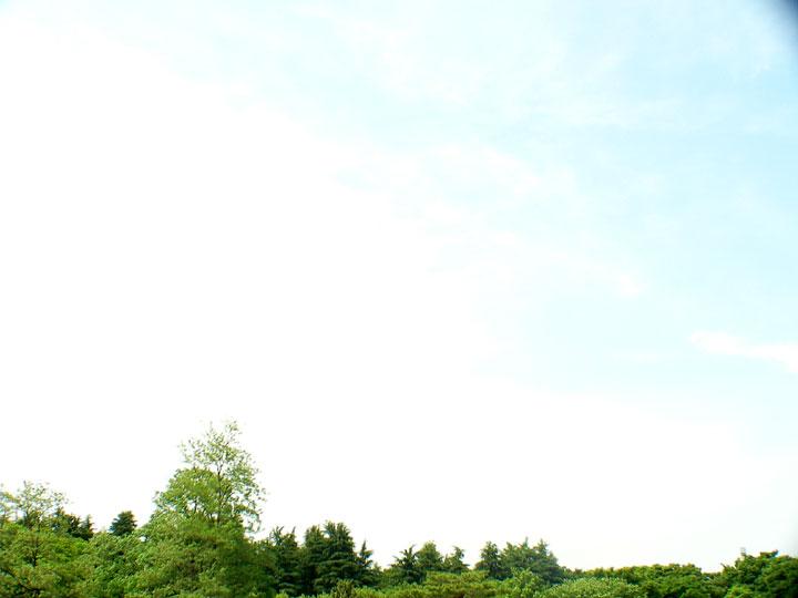 20070526-mi.jpg